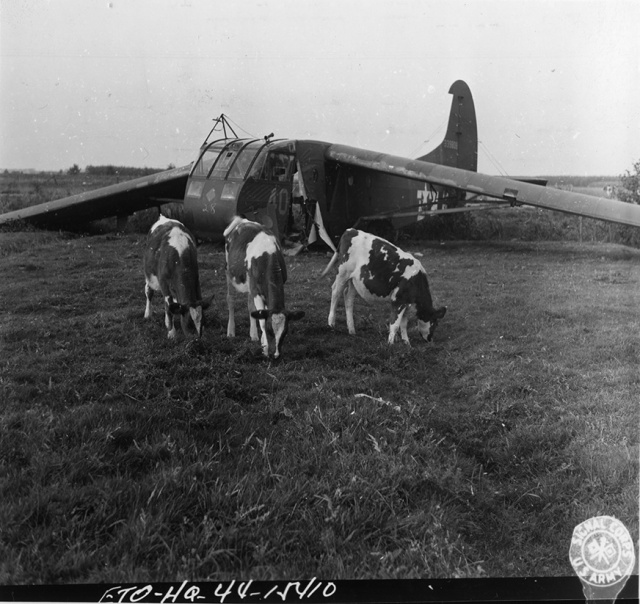 Waco glider crashed in a field in Holland.
